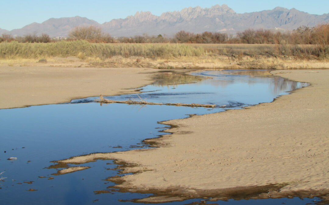 Planning for New Mexico's Water Future